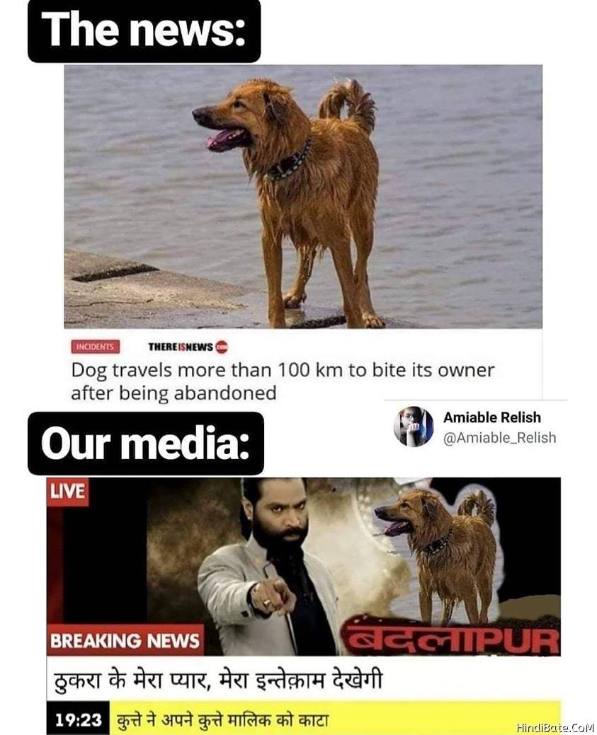 Dog Memes in Hindi