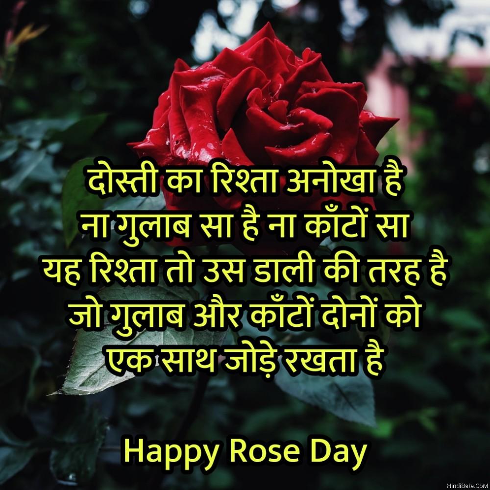 दोस्ती का रिश्ता अनोखा है ना गुलाब सा है ना काँटों सा
