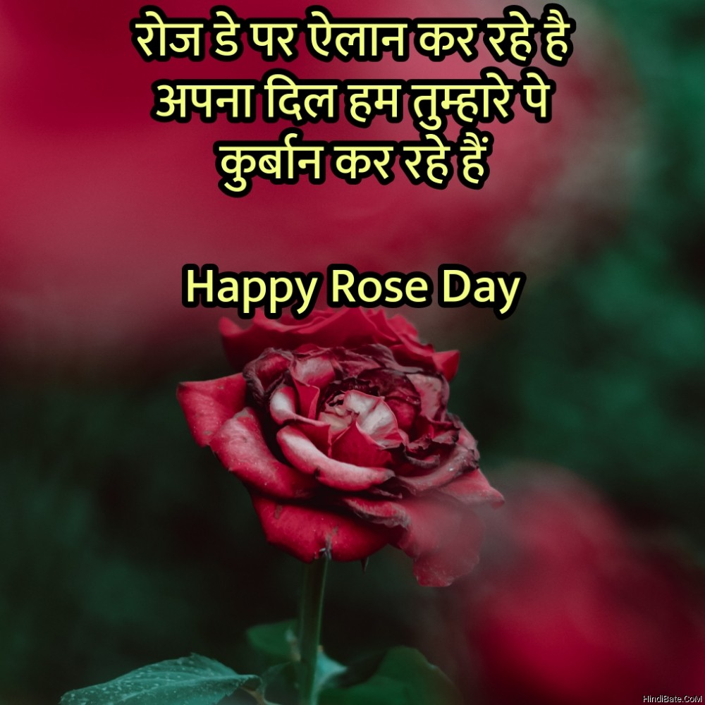 Happy Rose Day Quotes With Image in Hindi