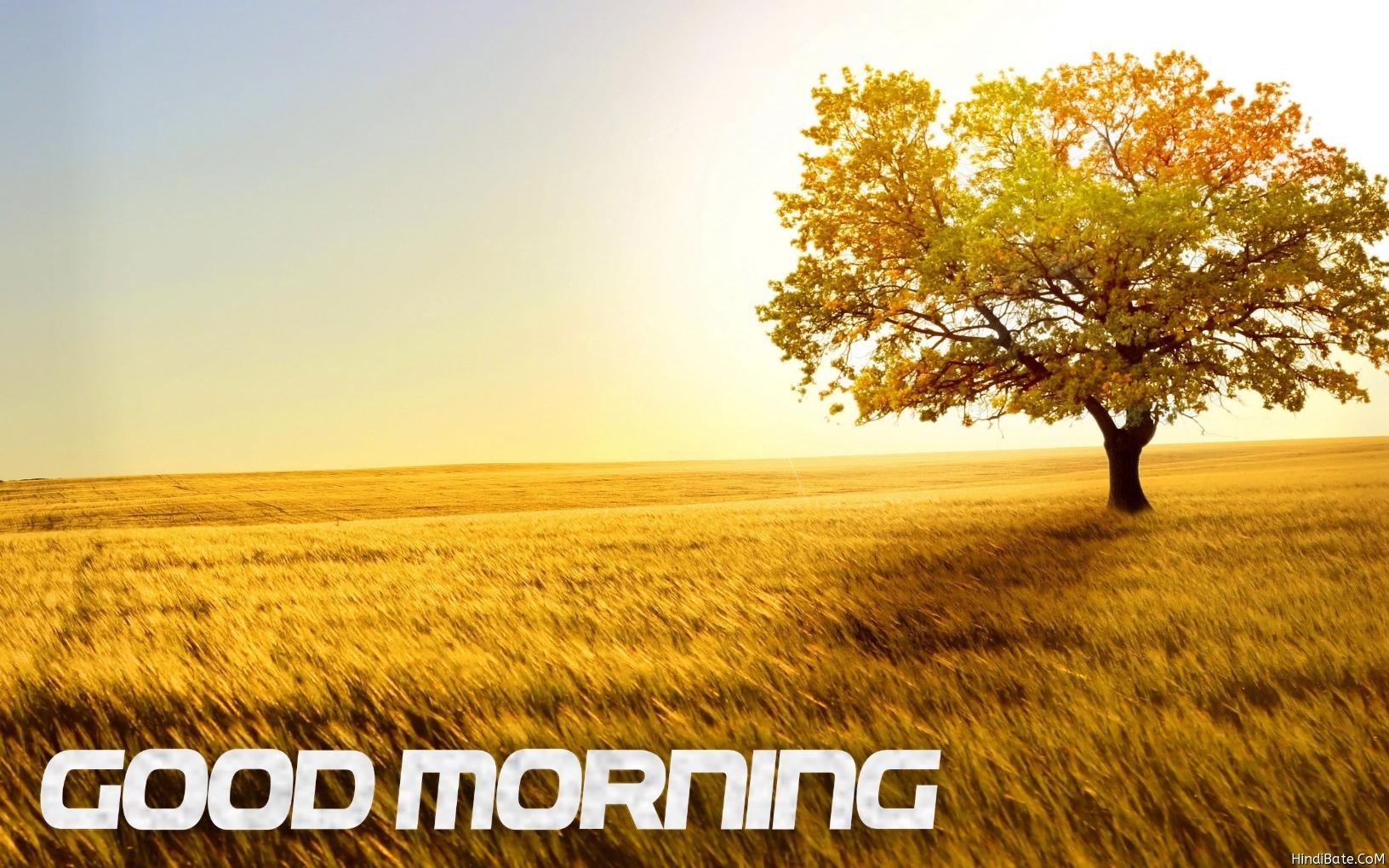 Good morning nature sunrise image