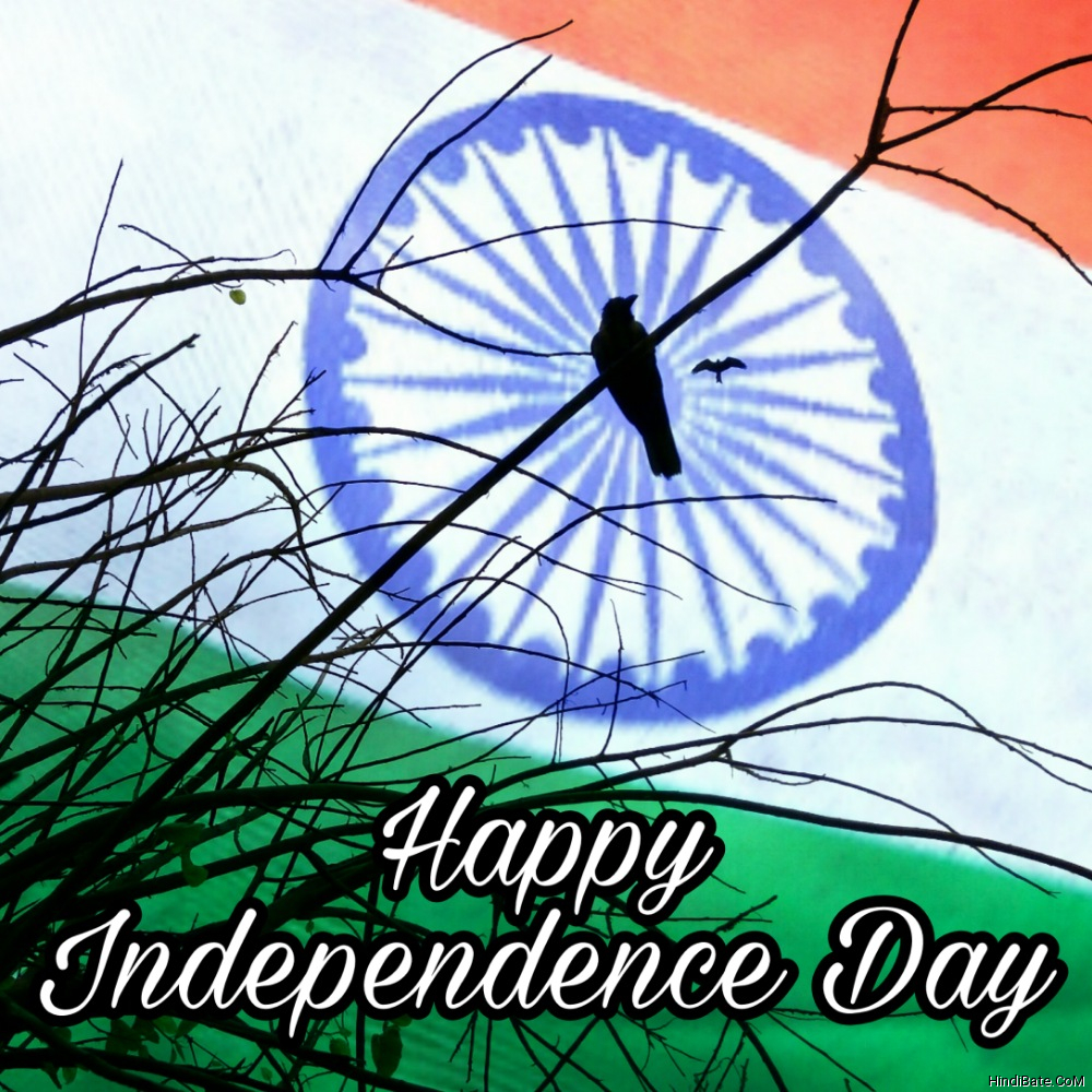 Happy Independence Day WhatsApp DP Pics