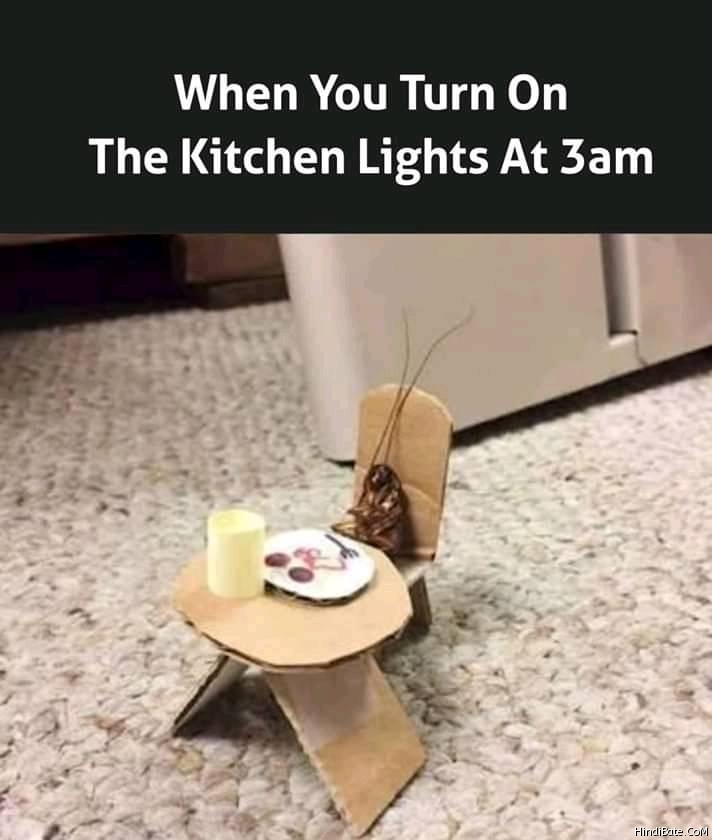 When you turn on kitchen lights at 3 am